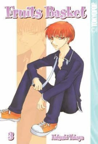 Fruits Basket: v. 3 manga